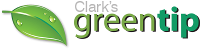 Clark's greentip